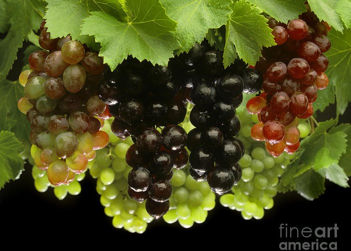 Craig Lovell Greeting Card featuring the photograph Table Grapes by Craig Lovell