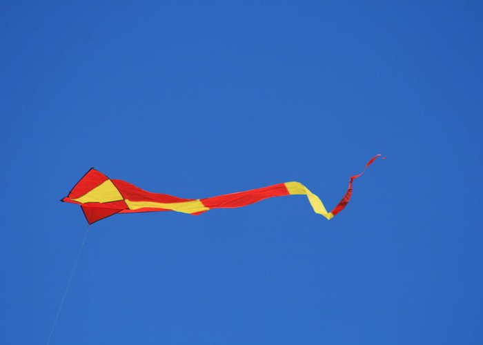 Kite Greeting Card featuring the photograph Tail Kite And Blue by Phoenix De Vries