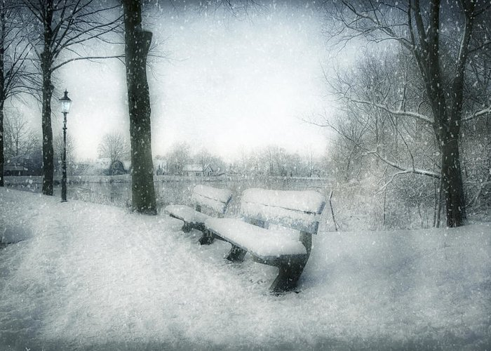 Snow Greeting Card featuring the photograph Take A Seat by Annie Snel
