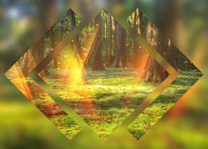 Magic Forest Greeting Card featuring the digital art Take Me To The Magic Forest by Beverly Claire Kaiya