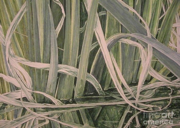 Iris Reeds Greeting Card featuring the painting Tangled Arrangement by John Wilson
