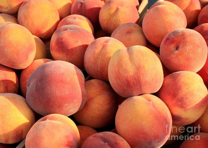 Peaches Greeting Card featuring the photograph Tasty Peaches by Carol Groenen