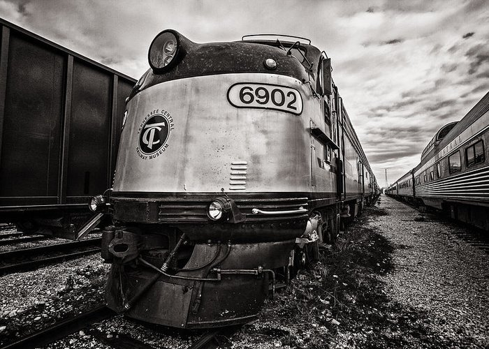 Www.cjschmit.com Greeting Card featuring the photograph Tc 6902 by CJ Schmit