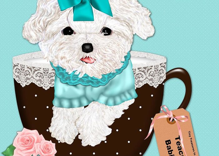 Teacup Greeting Card featuring the photograph Teacup Baby Maltese by Margaret Newcomb