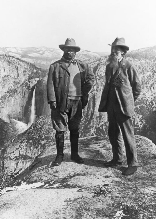 1903 Greeting Card featuring the photograph Teddy Roosevelt And John Muir by Underwood Archives