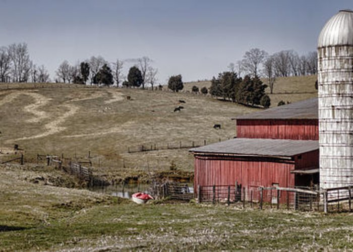 Barn Greeting Card featuring the photograph Tennessee Farmstead by Heather Applegate
