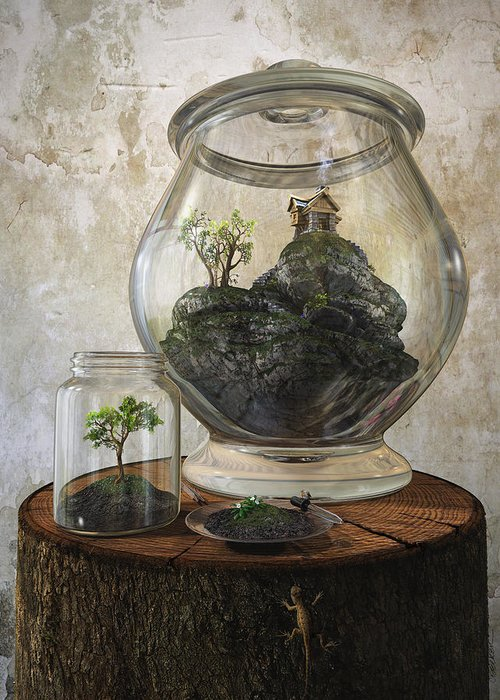 Jar Greeting Card featuring the digital art Terrarium by Cynthia Decker