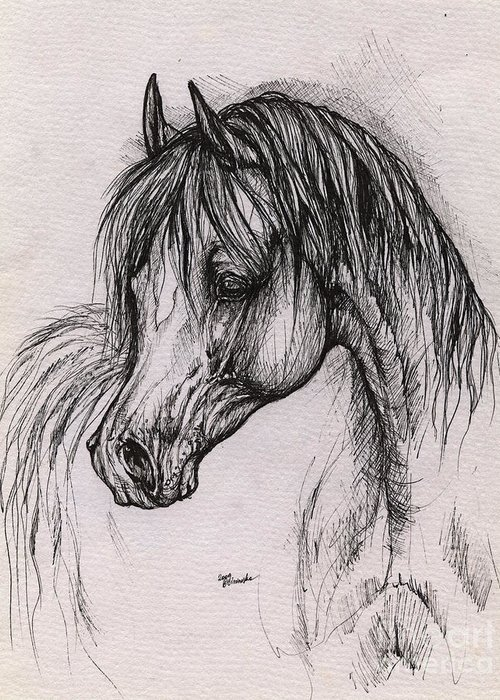Arabian Horse Greeting Card featuring the drawing The Arabian Horse With Thick Mane by Angel Ciesniarska
