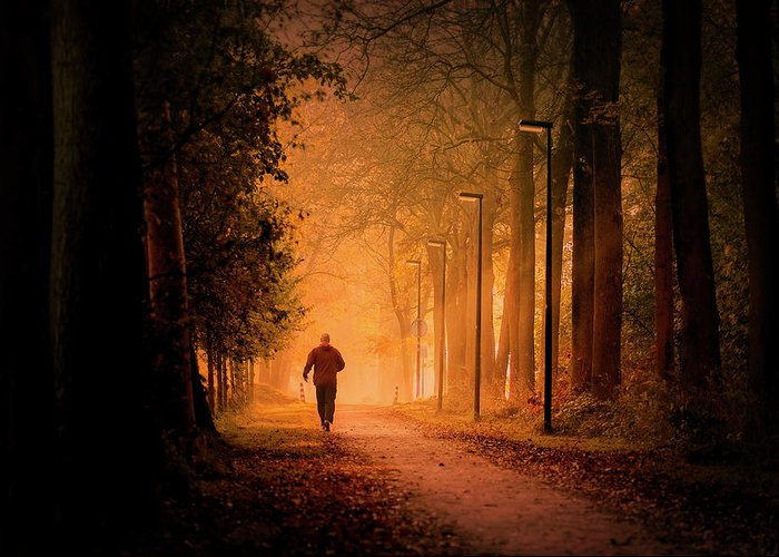 Dawn Greeting Card featuring the photograph The Autumn Run by Bob Van Den Berg Photography