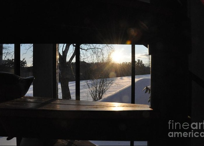 Winter Greeting Card featuring the photograph The Basement Window by John Black