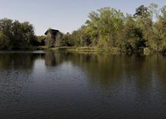 Panoramic Greeting Card featuring the photograph The Baughman Center At The University Of Florida Panoramic. by William Ragan