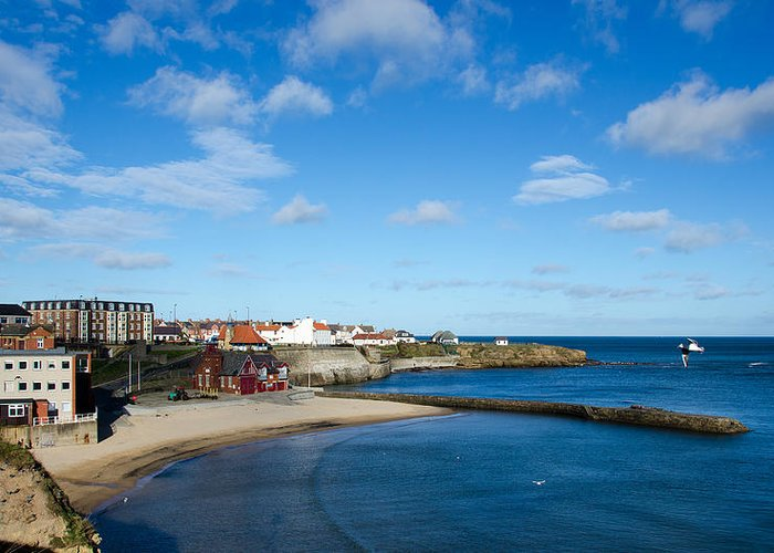 Beach Greeting Card featuring the photograph The Beach At Cullercoats by Paul Martin