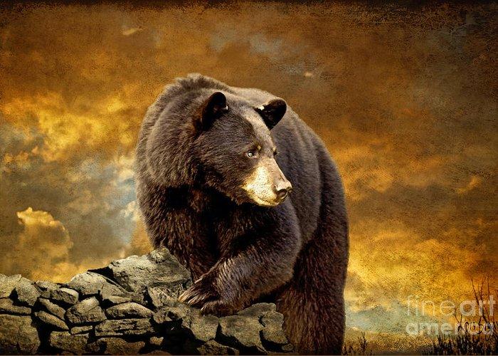 Brown Bear Greeting Cards