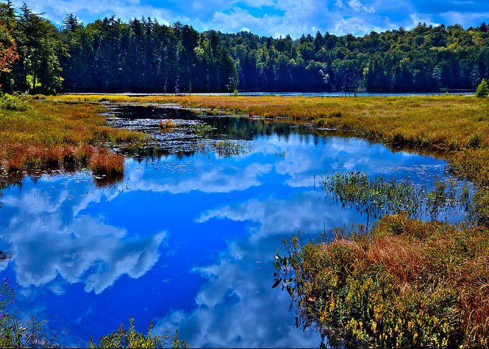 Adirondack's Greeting Card featuring the photograph The Beautiful Cary Lake - Old Forge New York by David Patterson