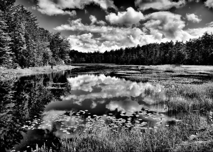 Adirondack's Greeting Card featuring the photograph The Beautiful Fly Pond On Rondaxe Road - Old Forge Ny by David Patterson
