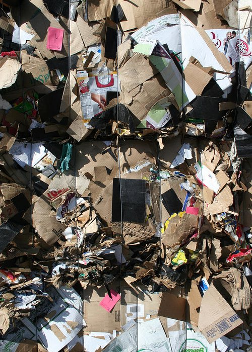 Trash Greeting Card featuring the photograph The Beauty Of Recycling by Ric Bascobert