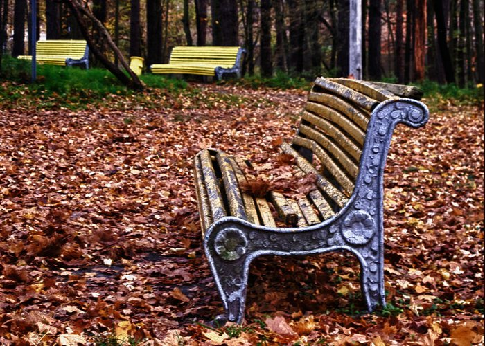 The Bench Greeting Card featuring the photograph The Bench by Brian Orlovich