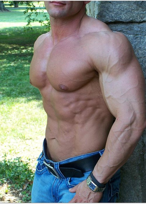 Pecs Greeting Card featuring the photograph The Bodybuilder Soft Touch by Jake Hartz