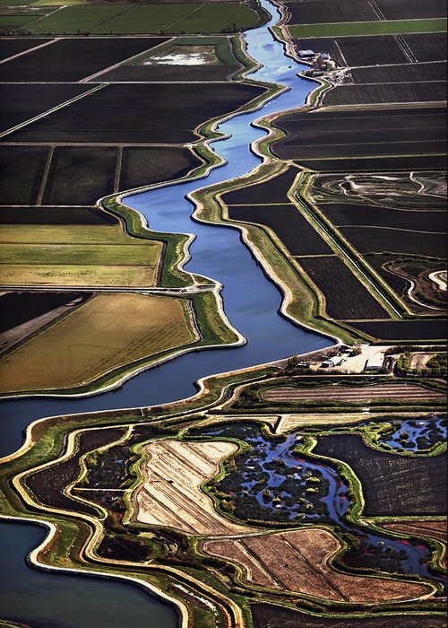 California Delta Greeting Card featuring the photograph The California Delta by Adrian Mendoza