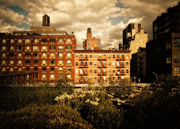 New York City Greeting Card featuring the photograph The Chelsea Skyline - High Line Park - New York City by Vivienne Gucwa