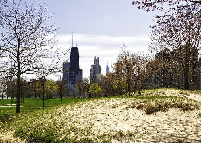 Chicago Photographs Greeting Card featuring the photograph The Chicago Skyline Day-003 by David Allen Pierson