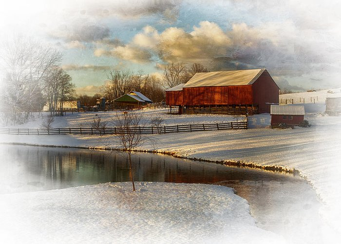 Kathy Jennings Greeting Card featuring the photograph The Color Of Winter by Kathy Jennings