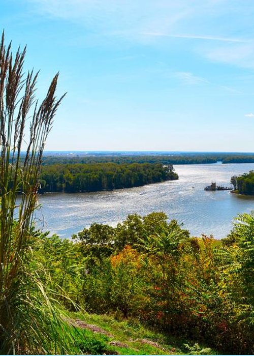 Mississippi River Scene Greeting Card featuring the photograph The Confluence by Julie Dant