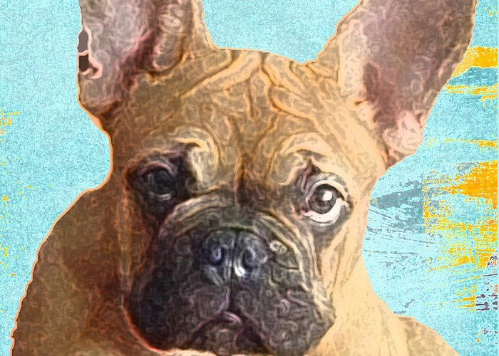 The French Bull Dog Greeting Card featuring the photograph The Cruz-man by Dianne Ferrer
