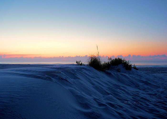Sand Greeting Card featuring the photograph The Dunes by JC Findley