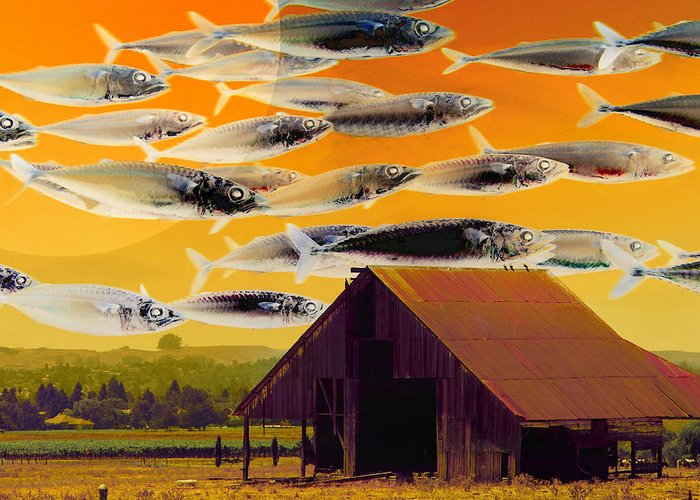Landscape Greeting Card featuring the photograph The Fish Farm 5d24404 Square by Wingsdomain Art and Photography