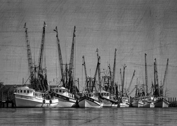 Darian Greeting Card featuring the photograph The Fleet by Debra and Dave Vanderlaan