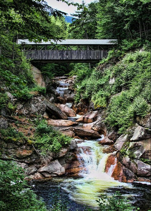 Sentinel Pine Greeting Card featuring the photograph The Flume by Heather Applegate