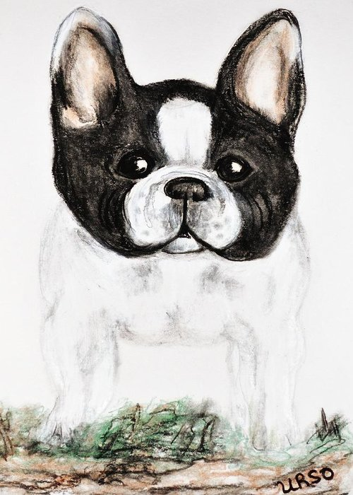 The Frenchton Greeting Card featuring the drawing The Frenchton by Maria Urso