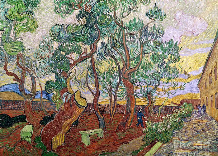 Tree Greeting Card featuring the painting The Garden Of St Pauls Hospital At St. Remy by Vincent Van Gogh