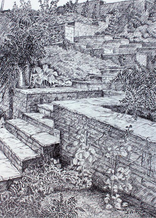 Garden Greeting Card featuring the drawing The Garden Wall by Janet Felts