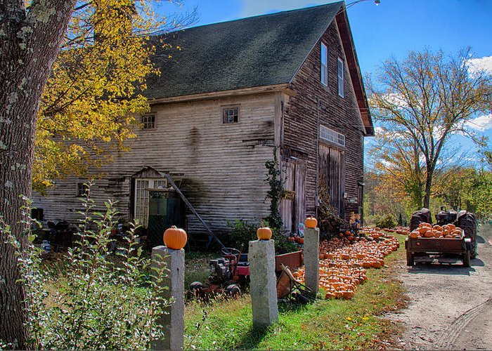 Autumn Foliage Greeting Card featuring the photograph The Harvest Is In by Jeff Folger