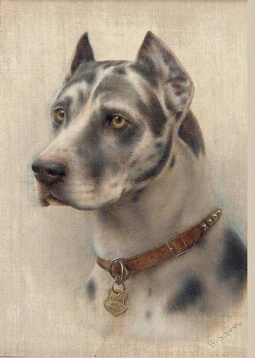 Head Greeting Card featuring the painting The Head Of A Doberman by Wilhelm Schwar