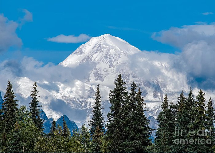 Alaska Greeting Card featuring the photograph The High One by Susan Serna