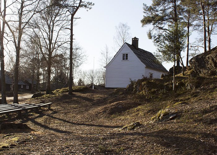 Landscape Greeting Card featuring the photograph The House In The Woods by Marie Bruntveit