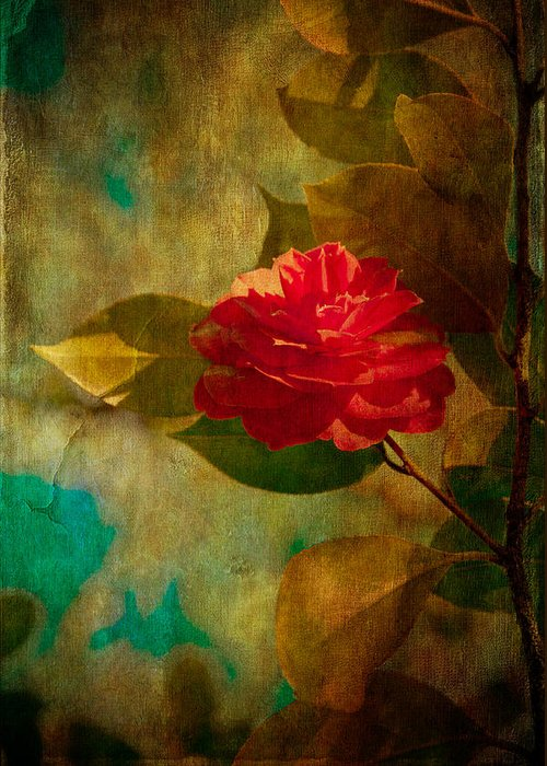 Loriental Greeting Card featuring the photograph The Lady Of The Camellias by Loriental Photography