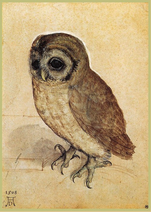 Durer Greeting Card featuring the painting The Little Owl 1508 by Philip Ralley