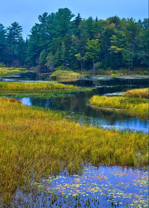 Adirondack's Greeting Card featuring the photograph The Meandering Moose River - Old Forge New York by David Patterson