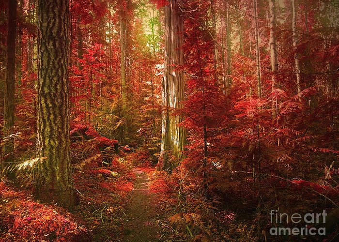 Trees Greeting Card featuring the photograph The Mystic Forest by Tara Turner