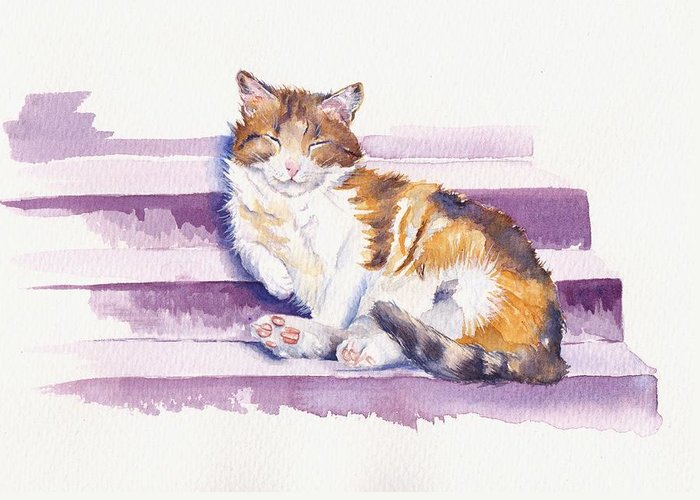 Calico Cat Greeting Cards
