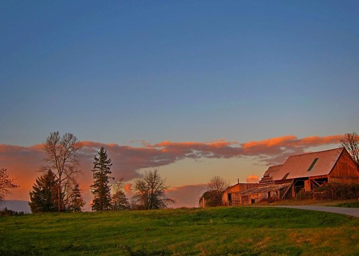 Barn Greeting Card featuring the photograph The Old Barn by Lena Photo Art