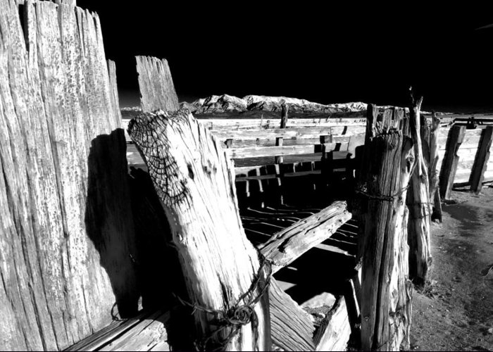 Black Greeting Card featuring the photograph The Old Corral by Cat Connor