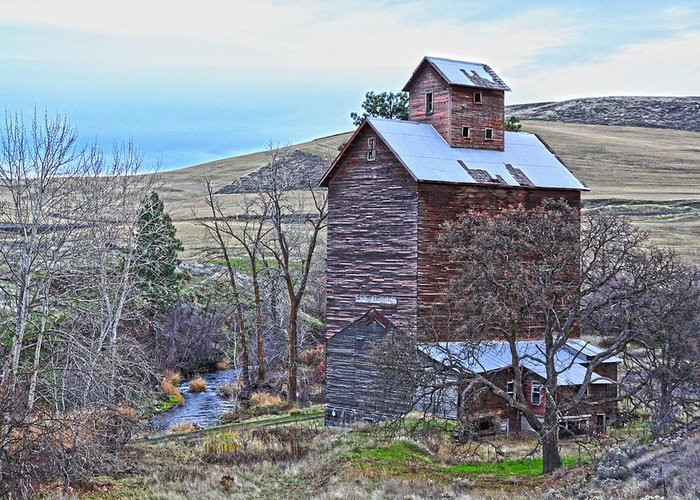 Cabin Greeting Card featuring the photograph The Old Grain Storage by Steve McKinzie