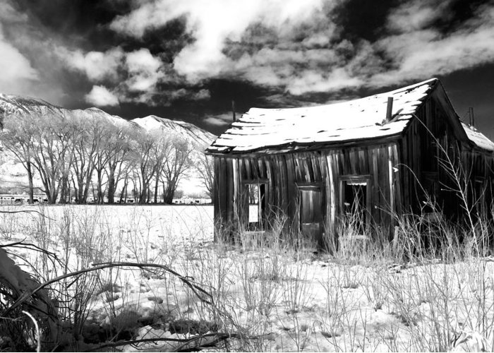 Black Greeting Card featuring the photograph The Old Homestead by Cat Connor