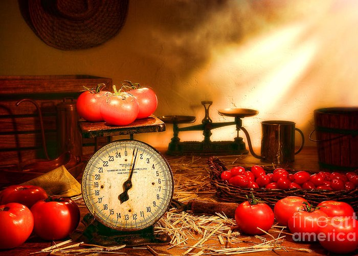 Tomatoes Greeting Card featuring the photograph The Old Tomato Farm Stand by Olivier Le Queinec