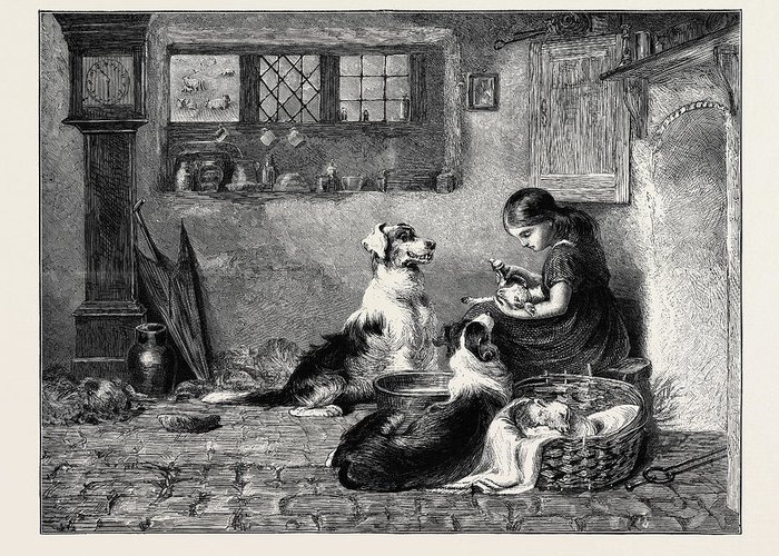 Briton Riviere Drawings Greeting Cards